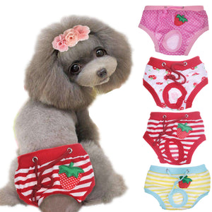 Female Dog Shorts