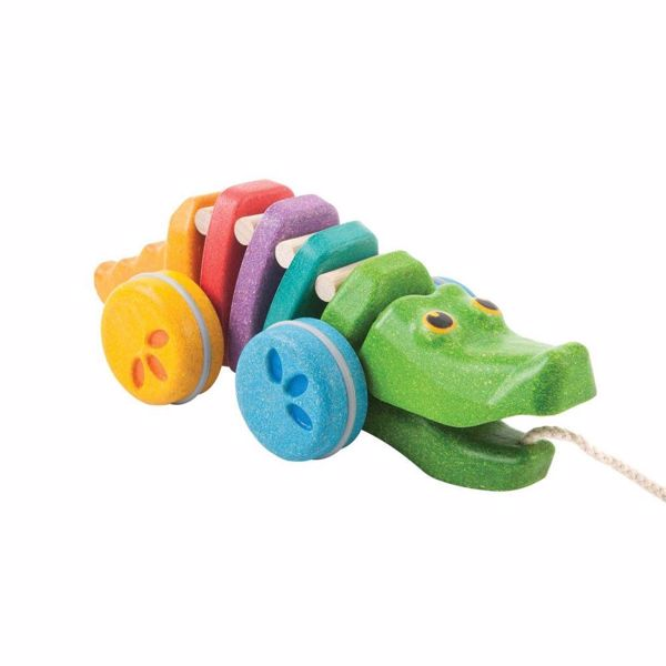 Rainbow Alligator