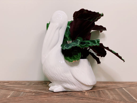 Ceramic Pelican Planter