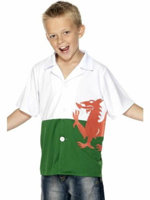 Welsh Flag Shirt (Junior) - 30976 - ColourYourEyes.com