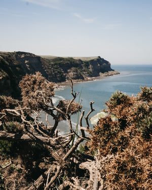 Go explore: Cleveland Way (Robin Hood's Bay to Whitby)