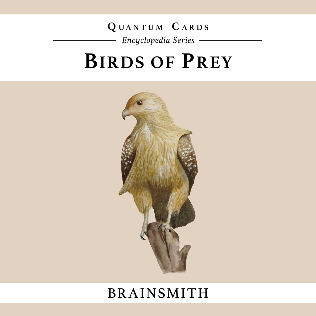 Birds of Prey Quantum Cards