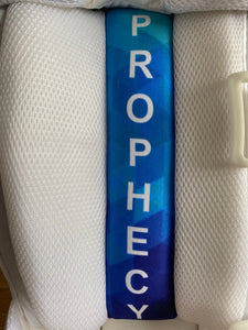 Prophecy Cricket Batting Pads