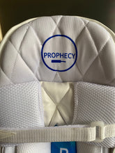 Load image into Gallery viewer, Prophecy Cricket Batting Pads