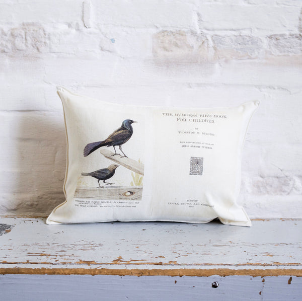 bird book pillow