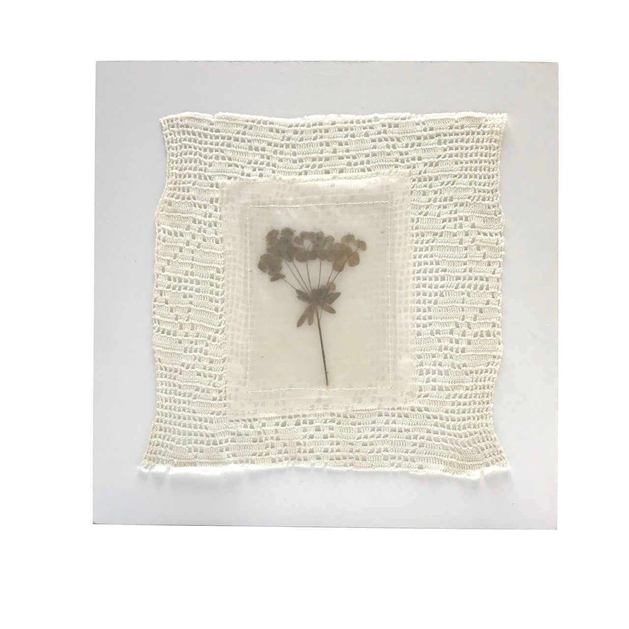 pressed flower . lace art