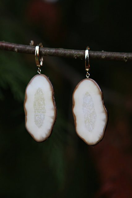 Fossil Walrus Ivory Slice Earrings
