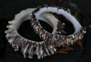 Naturally Shed Moose Antler Crown Bangle