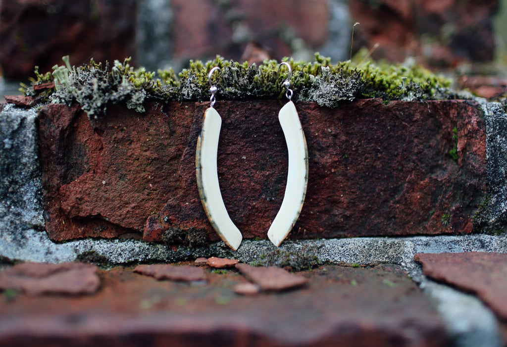 Natural Tusk Earrings