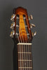Asher Electro Hawaiian Short Scale -  23 inch - with Custom Lollar pickup #993