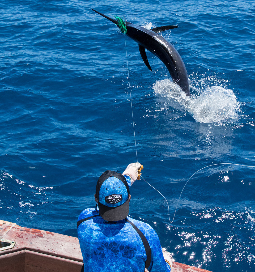 Blue Marlin_Pelagic Rockstar Tournament_Jumping