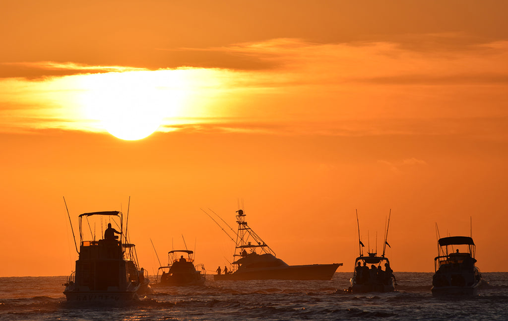 Cabo San Lucas Sunrise_Tuna Tournament