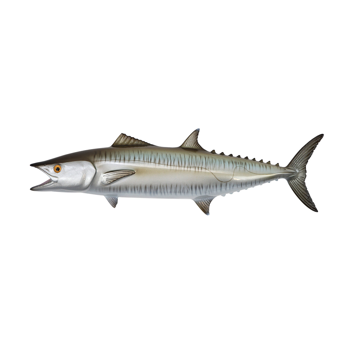 Kingfish - Fish Mount Grey Big Image - 1