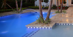 Mexican tile outdoor pool palm trees