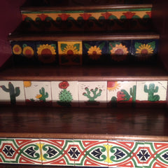 Mexican Tile Staircase Plants