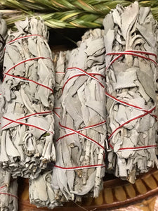 1 California White Sage Dried Leaf Wands Ceremonial Herb
