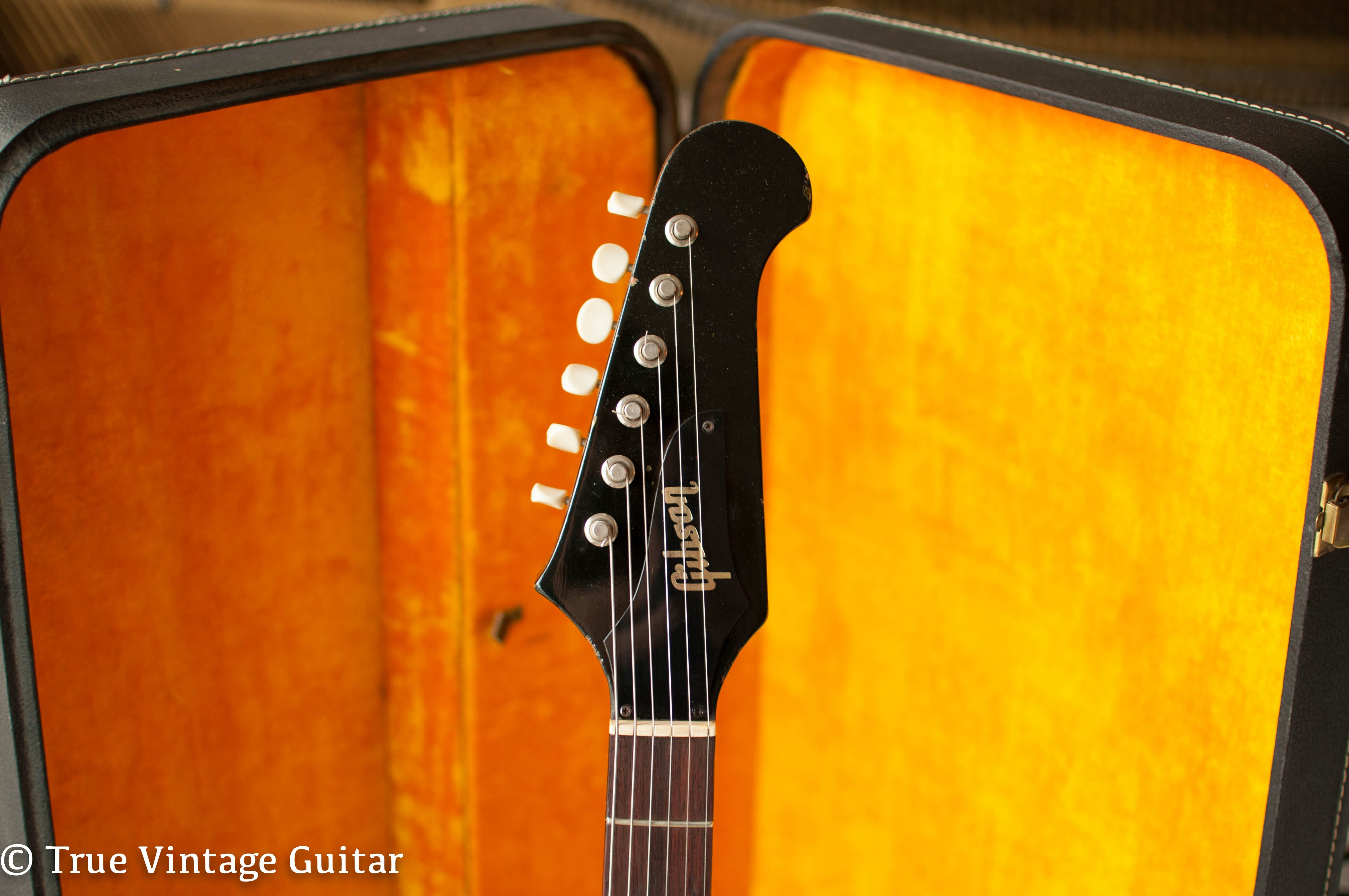 Gibson Firebird headstock 1966