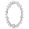 CAMO Stainless Steel Round Chainring