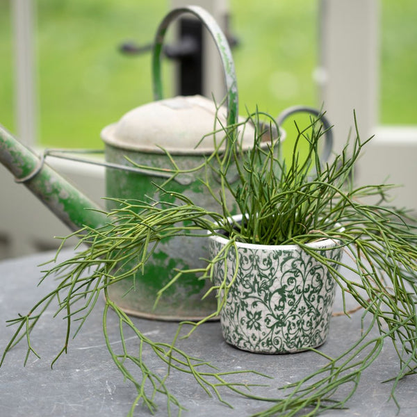 Faux Trailing Grass Plant in Pot