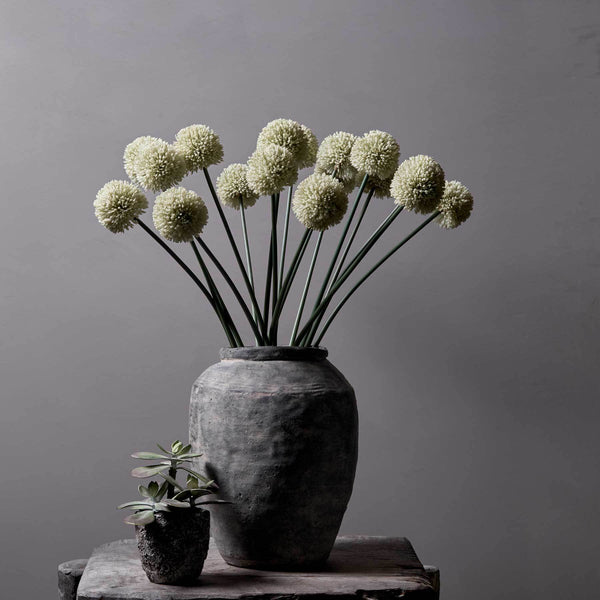 Faux White Allium - Greige - Home & Garden - Chiswick, London W4