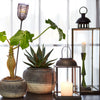 Antiqued Metal Albi Lantern - Three Sizes - Greige - Home & Garden - Chiswick, London W4