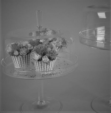 Footed Glass Cake Stand & Dome - Greige - Home & Garden - Chiswick, London W4