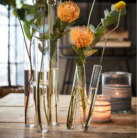Test Tube Vases - Two Styles - Greige - Home & Garden - Chiswick, London W4