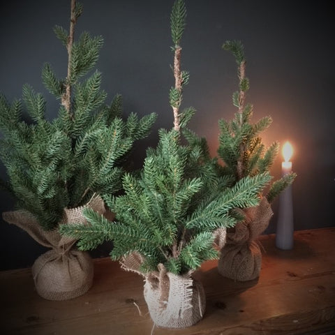 Faux Christmas Tree in Jute Sack - Two Sizes - Greige - Home & Garden - Chiswick, London W4