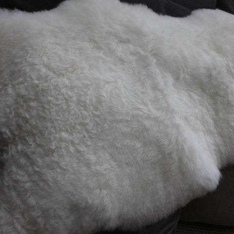 Ivory Short Haired Iceland Sheepskin