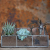 Glass & Zinc Planter - Greige - Home & Garden - Chiswick, London W4