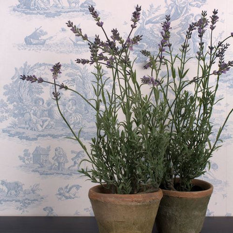 Faux Mini Lavender Plant - Greige - Home & Garden - Chiswick, London W4
