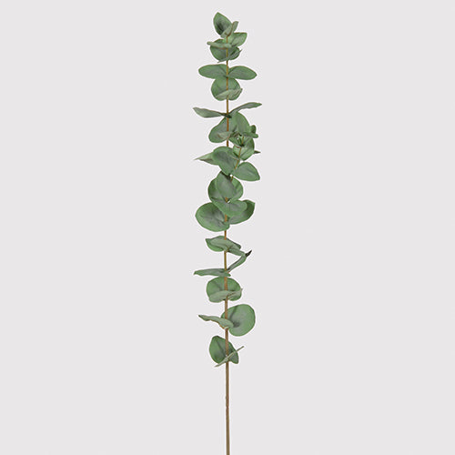 Faux Round Leaf Eucalyptus - Tall Single Branch - Greige - Home & Garden - Chiswick, London W4