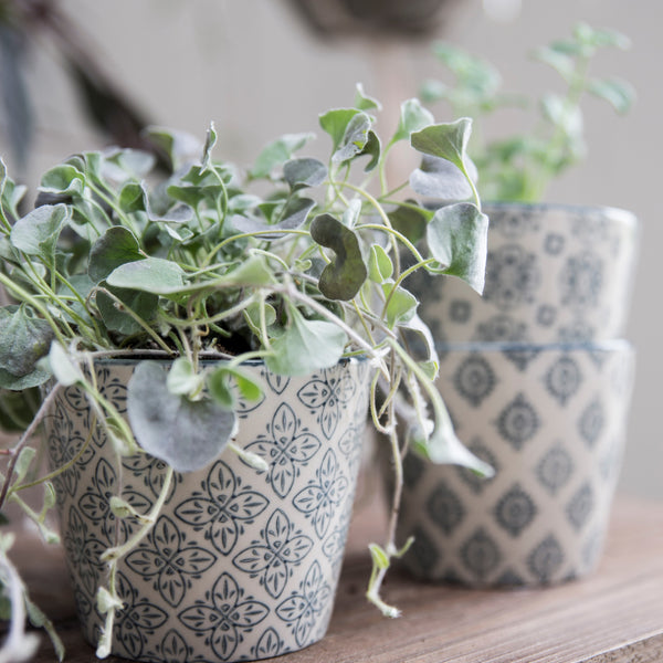 Patterned Stoneware Flower Plant Pot Set Of Four Grey