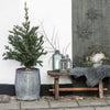 ribbed zinc planter for christmas tree