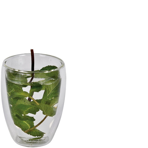 Thermo Double Walled Glass Beaker Mug