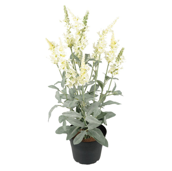 Faux White Veronica Plant in Pot - Greige - Home & Garden - Chiswick, London W4