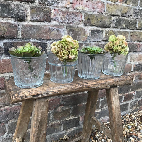 Vintage Style Glass Flower Pots - Four Assorted Designs - Greige - Home & Garden - Chiswick, London W4