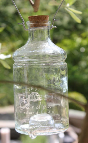 Traditional glass wasp catcher bottle with cork