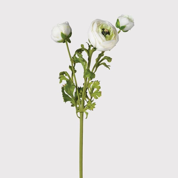 Faux White Ranunculus - Greige - Home & Garden - Chiswick, London W4