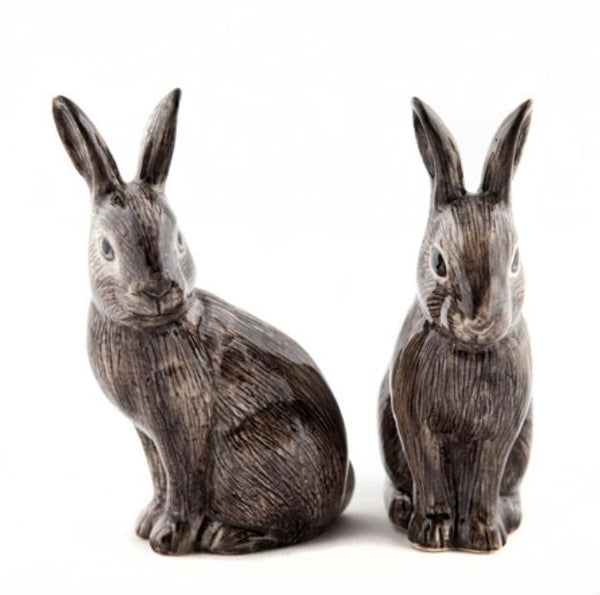 wild rabbit salt and pepper pots by Quail Ceramics