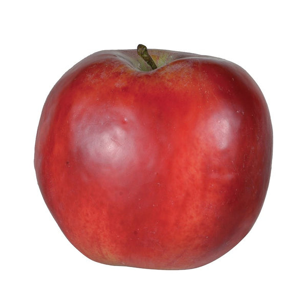 Faux Red Windsor Apple - Greige - Home & Garden - Chiswick, London W4