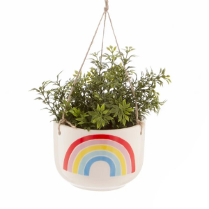Hanging Rainbow Plant Pot