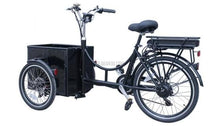 Laden Sie das Bild in den Galerie-Viewer, Smallone Cargo E-Bike 250W / 36V DAPU Motor 10Ah-Cargo Bike-Marcia Hand in Hand-Kilimando