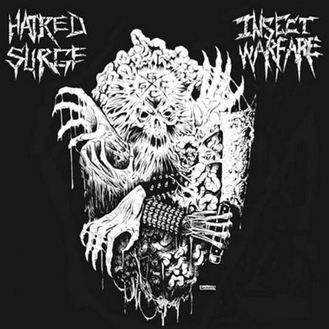 INSECT WARFARE / HATRED SURGE Split 7""