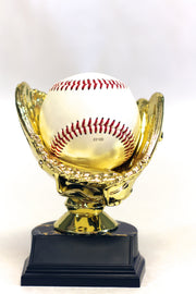 The Golden Glove Award-Baseball