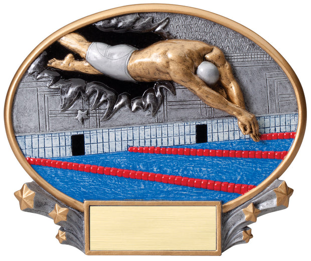 Male Swimming 3D Plate Trophy