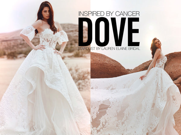 Dove gown from Lauren Elaine Bridal Stardust Collection