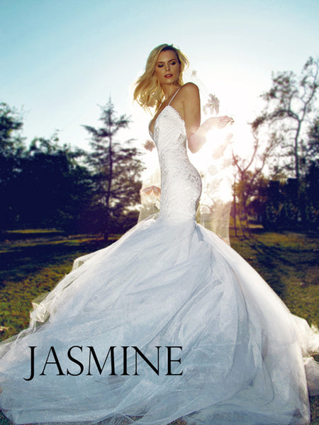 Jasmine by Lauren Elaine Bridal. Lace and tulle mermaid wedding gown with open back and cathedral train.