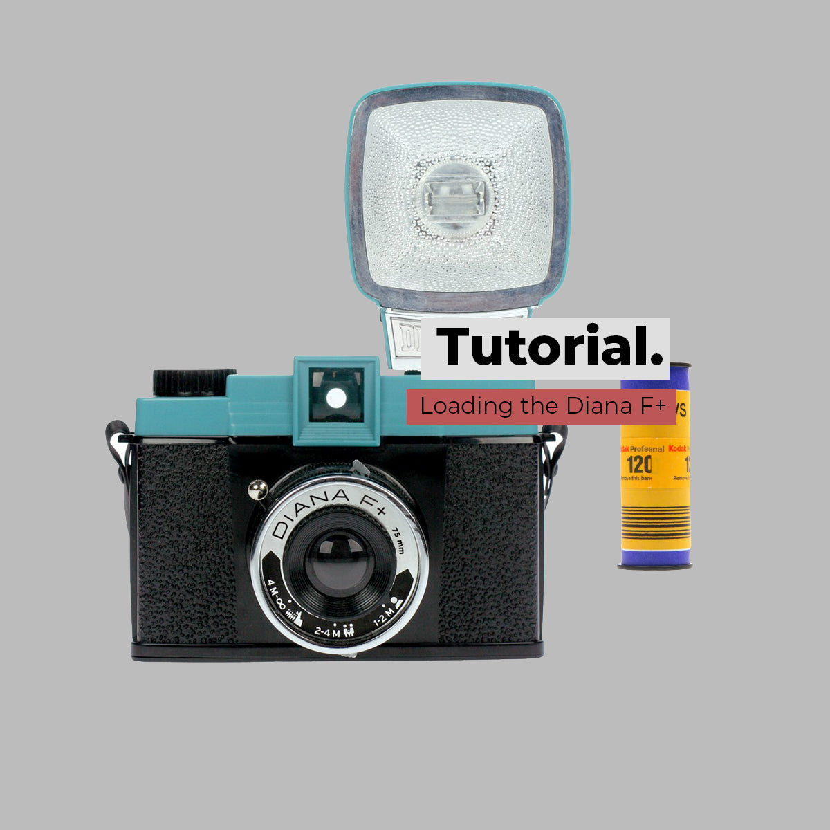 How to load the Diana F+ Camera
