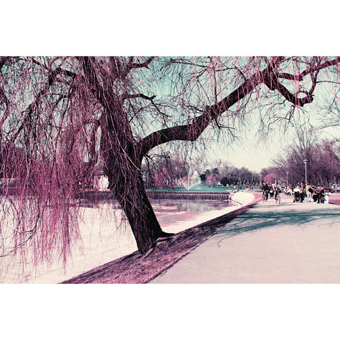 Lomography Lomochrome Purple 35mm ISO 100-400[product_tag] - 8storeytree